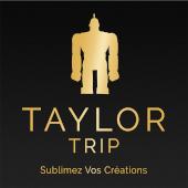 David Taylor - Creation